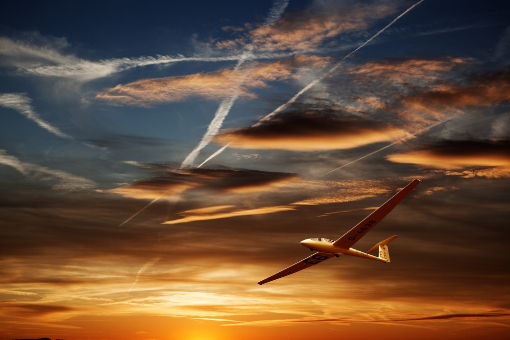 חיקוי תנועת ציפורים בכלי טיס